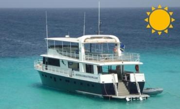 Mermaid Boat Trips