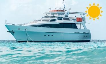 Miss Ann Boat Trips